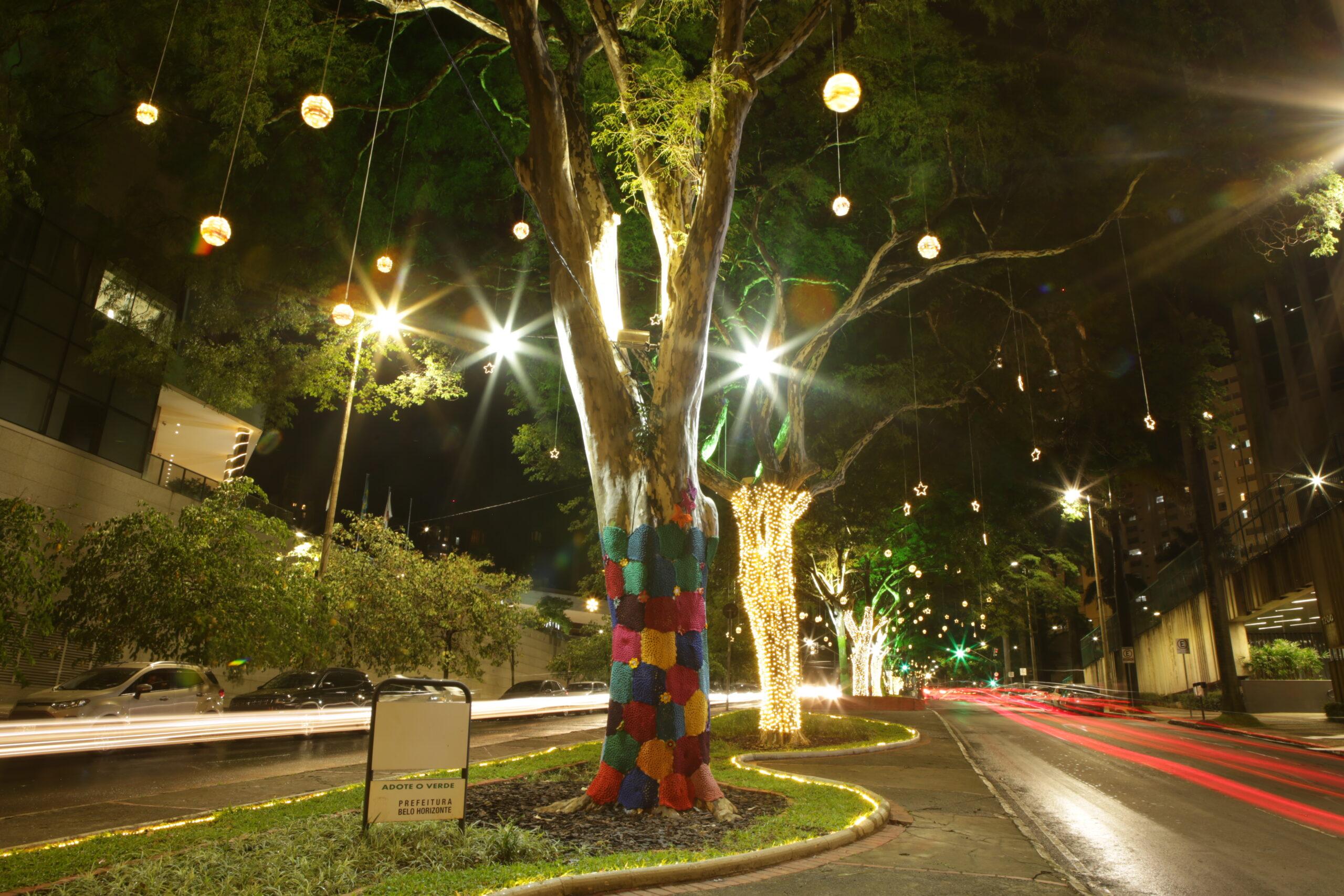 Confira as fotos do natal de luzes Cemig